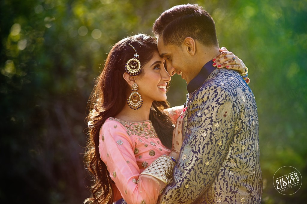 South Asian Michigan engagemnet photos 10