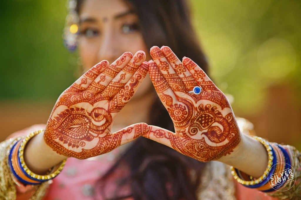 South Asian Michigan engagemnet photos 16