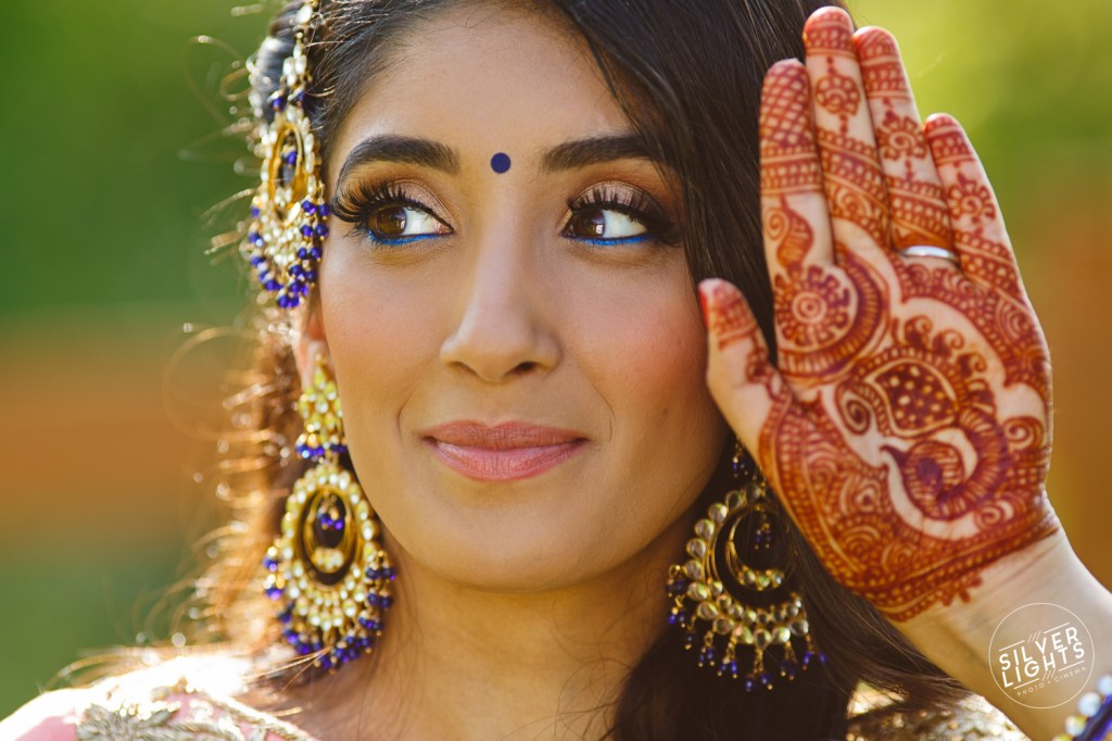 South Asian Michigan engagemnet photos 17