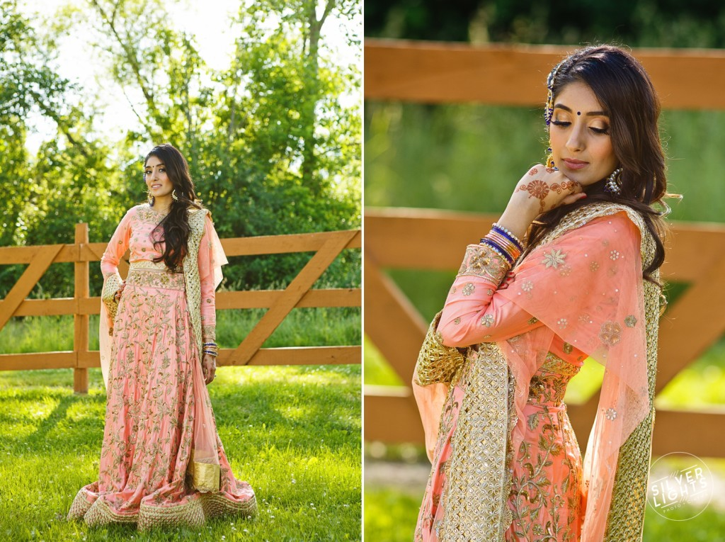South Asian Michigan engagemnet photos 18
