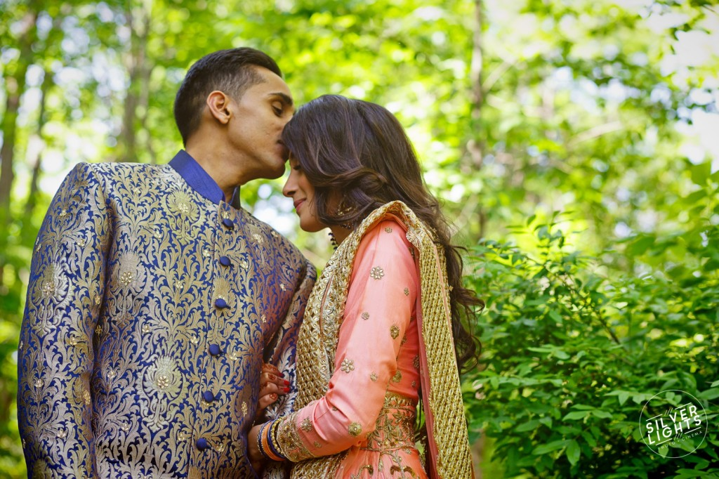 South Asian Michigan engagemnet photos 2