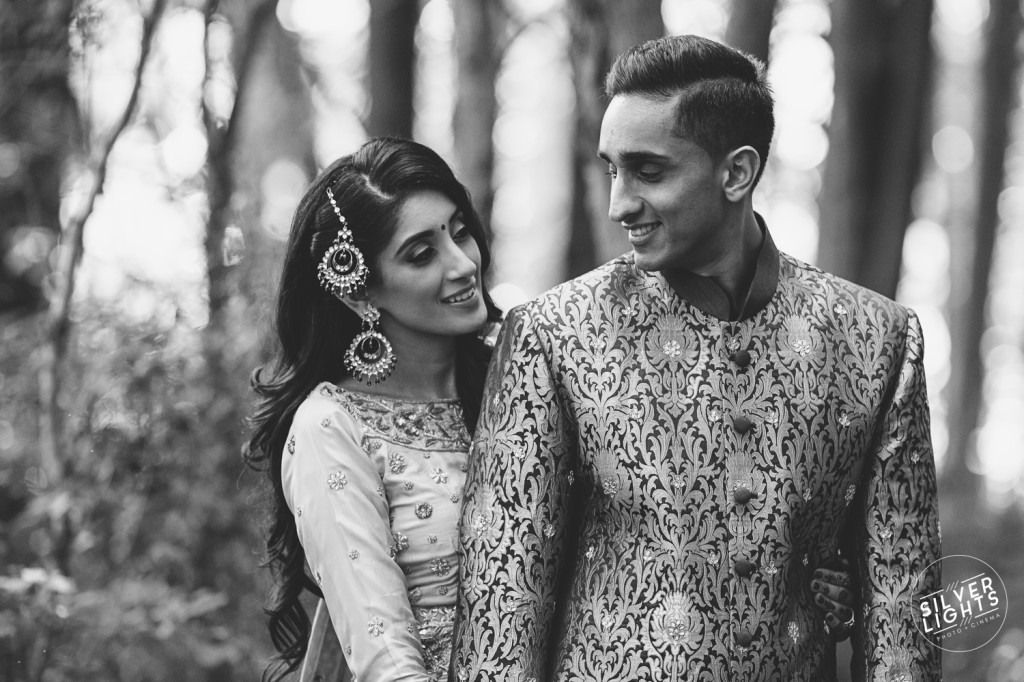 South Asian Michigan engagemnet photos 3