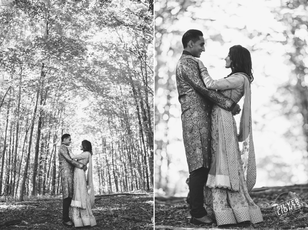 South Asian Michigan engagemnet photos 4