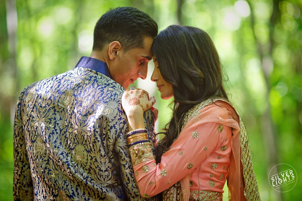 South Asian Michigan engagemnet photos 6