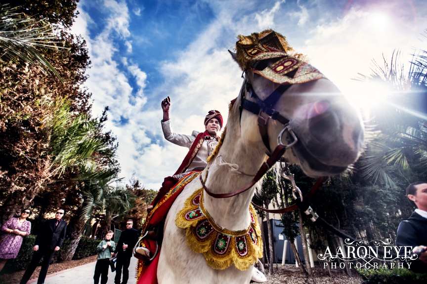 baraat-torrey-pines-indian-wedding-la-jolla-san-diego-1